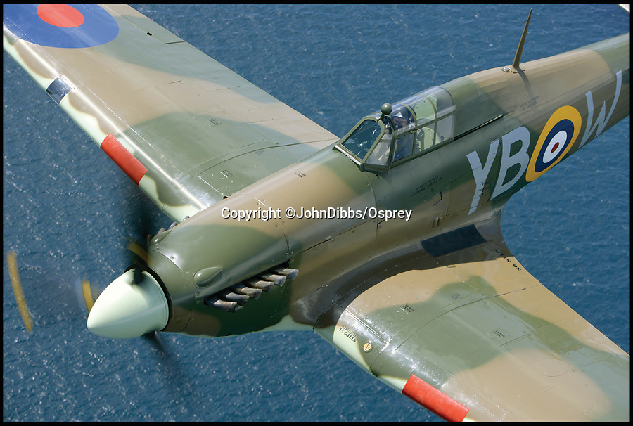 BNPS.co.uk (01202 558833)<br /> Pic: JohnDibbs/Osprey/BNPS<br /> <br /> Ready for my close up - Hurricane MkIIC LF363.<br /> <br /> Last of the Few - A photographer's stunning new book is a tribute to the last Hawker Hurricane's - the true workhorse of the Battle of Britain.<br /> <br /> Only 13 WW2 Hurricanes are still airworthy today, compared to over 60 of their more glamorous counterpart the Spitfire.<br /> <br /> But during the Battle of Britain there were in fact twice as many Hurricane's as Spitfires taking on Hitlers Luftwaffe in the skies over southern England.<br /> <br /> The Hurricane may be viewed as less glamorous than the Spitfire, but these stunning photographs reveal just how majestic it was in full flight.<br /> <br /> Photographer John Dibbs has got up close and personal to the legendary fighter planes in order to capture them like never before.<br /> <br /> His 10 year quest for surviving Hurricanes took him all over the world and he photographed them in England, France, the United States and New Zealand.<br /> <br /> Using the skill and experience of highly experienced RAF and civilian pilots, Mr Dibbs was able to fly to within 15ft of some of the last remaining Hurricanes - with breath-taking results.<br /> <br /> There was a fair degree of skill involved as he took the photos from the canopy of a Second World War trainer aircraft which was travelling at 200mph while confronting wind blast.<br /> <br /> The thrilling photos were taken for an a definitive history of the Hurricane which is told by Mr Dibbs and aviation historians Tony Holmes and Gordon Riley in their new book Hurricane, Hawker's Fighter Legend.