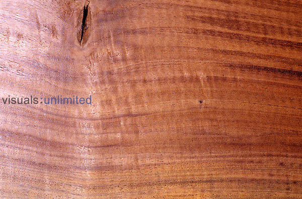 Close-up of Claro Walnut wood (Juglans). Native to Western North America.
