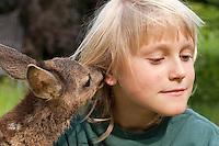 Rehkitz, Reh-Kitz, verwaistes, pflegebedürftiges Jungtier wird in menschlicher Obhut großgezogen, Kind, Junge mit Kitz im Garten, Kitz nuckelt, saugt und leckt am Ohr des Kindes, Tierkind, Tierbaby, Tierbabies, Europäisches Reh, Ricke, Weibchen, Capreolus capreolus, Roe Deer, Chevreuil Europäisches Reh, Ricke, Weibchen, Capreolus capreolus, Roe Deer, Chevreuil
