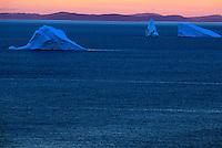 Icebergs outside St. Johns Newfoundland.