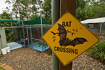 Tolga Bat Hospital - Bat Crossing sign