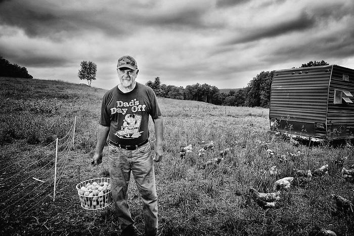 A Farmer gathering Eggs at Lowland Farm in Warwick, New York