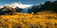 Camping with stnning views of Franz Josef Glacier from Alex Knob, Westland Tai Poutini National Park, UNESCO World Heritage Area,  West Coast, New Zealand, NZ