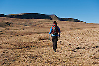 Female hiker hiking in Black Mountain range of Brecon Beacons national park, Wales
