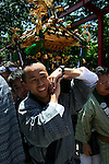 Sanja Matsuri Mikoshi Bearers - the biggest of Tokyo's traditional 3 grand festivals is held at Asakusa Shrine;  the Sanja festival is a three-day weekend of boisterous traditional mikoshi processions through the streets of Asakusa with plenty of drinking, dancing, music and other revelry. Held by the Sensoji Temple in Tokyo, the huge parade draws over two million people into the streets.  The gold and black lacquer mikoshi are the vehicles of the shrine's kami or deities and the purpose of the processions is to bring luck and prosperity to the areas inhabitants. Many of the mikoshi are so large, heavy and elaborate that dozens of people are required to carry them.