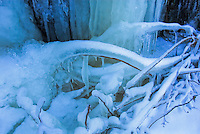 &quot;LUMINOSITY&quot;<br /> <br /> Light from above creates a luminous effect on an ice laden landscape. Refracted light and shadows paint gorgeous colors.