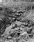 These Japanese soldiers, now lying in a muddy shell hole on Saipan, wwere part of a force that made a thrust at the advancing Marines but fell beneath withering fire.