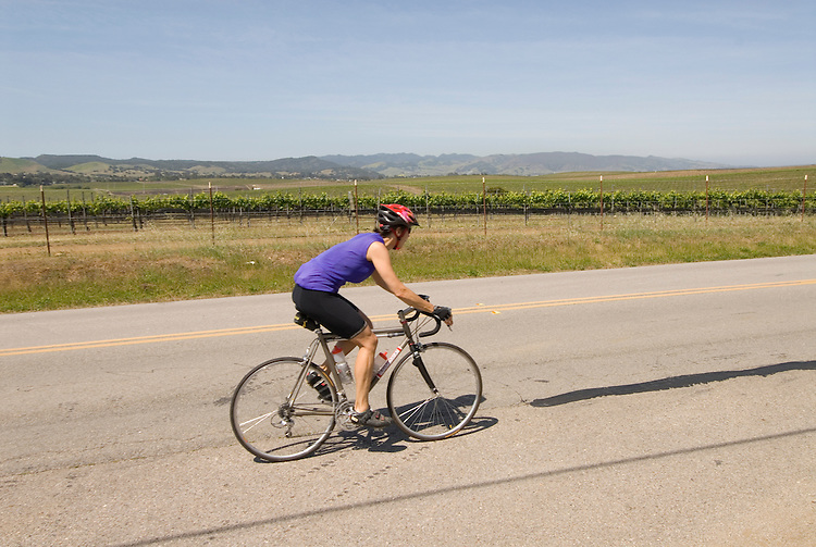 California, San Luis Obispo County: Bicycle rider on back country road near Edna Valley Vineyard..Photo caluis120-71029..Photo copyright Lee Foster, www.fostertravel.com, 510-549-2202, lee@fostertravel.com