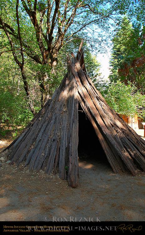 Yosemite Mono Paiute Bark House (umuucha, umacha, or o'chum), Ahwahnee Village exhibit, Yosemite Museum, Yosemite National Park