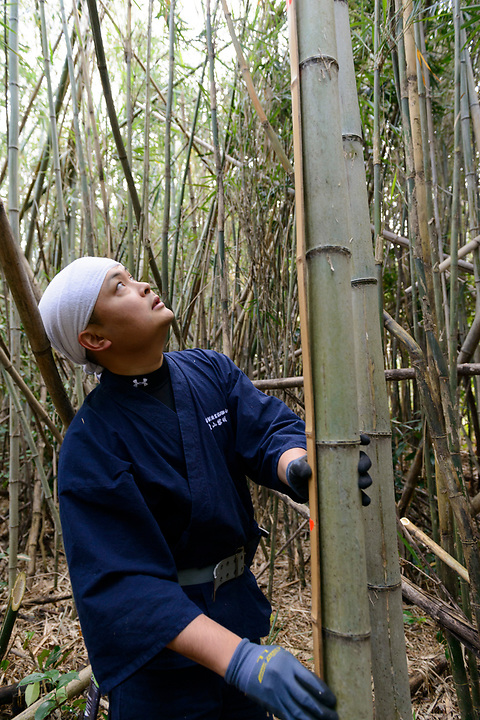 Keitarou Yokoyama measuring bamboo to see if it is suitable for bow making. Yokoyama Reimei Bowmakers, Miyakonojo, Miyazaki Prefecture, Japan, December 23, 2016. A handful of bowyers from the Kyushu city of Miyakonojo make over 90% of all the bows used in traditional Japanese archery. The bows are made from laminated bamboo and haze wood in process that consists of over 200 individual tasks. At over two meters from tip to tip the bows the longest used in the world.
