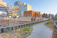 A view of the landscaping in High Line Park and the surrounding area.  The High Line is an urban aerial greenway reclaimed from the abandoned elevated West Side Line in New York City's Meatpacking district.