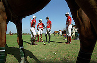 Horses stand next to members of the army as they prepare to play polo in Rawalpindi. This ancient sport originated in the subcontinent and was adapted by the British to train their calvalry regiments before they exported it all over the world.