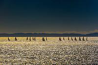 California-Santa Barbara-Sailboats