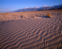 CADDV 020 -  Textures in sand dunes at Mesquite Flats are defined by early morning light, Grapevine Mountains rise in the distance, Death Valley National Park, California, USA