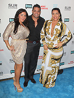 Mercedes Javid, Mike Shouhed, Asa Rhamati.Bravo's Andy Cohen's Book Release Party For &quot;Most Talkative: Stories From The Front Lines Of Pop Held at SUR Lounge, West Hollywood, California, USA..May 14th, 2012.full length black dress yellow gold white print hand on hip shirt trousers .CAP/ADM/KB.&copy;Kevan Brooks/AdMedia/Capital Pictures.