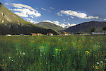 Farm buildings and meadow grass, Imst district, Tyrol/Tirol, Austria, Alps.