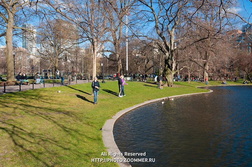 People feeding ducks in the Public Garden of Boston