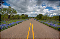 Along a small highway in the Hill Country, wildflower grow thick when the rains have been good during the winter. In the Spring of 2010, these bluebonnets lined the roadsides everywhere, especially around Mason County, as see here.