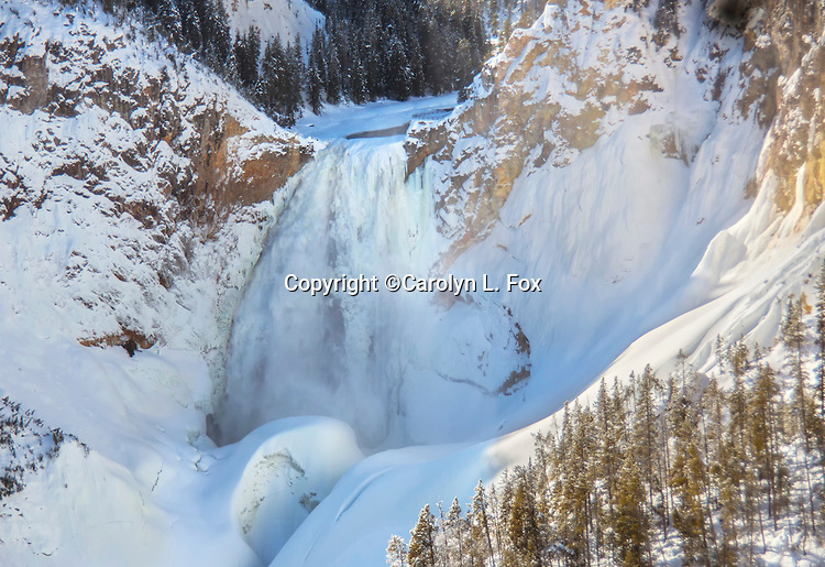 The Grand Canyon of the Yellowstone is a popular tourist attraction in Yellowstone National Park.