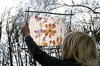 Kinder basteln ein Fensterbild mit Blüten, Junge hält fertiges Fensterbild mit durchscheinenden Blüten gegen den Himmel