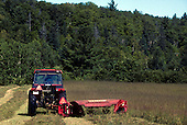 Mowing hay in field.