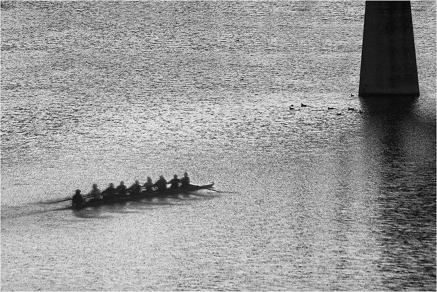 Early in the morning, rowers work hard on Ladybird Lake in Austin, Texas.