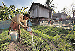 Mip Yok waters his garden in the Cambodian village of Char.
