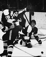 Minnesota North Stars Dennis O'Brien and goalie Cesare Maniago. (1972 photo/Ron Riesterer)