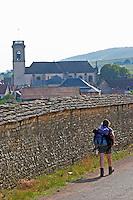 Trekking walking in the vineyards. Pommard village with church. Pommard, Cote de Beaune, d'Or, Burgundy, France