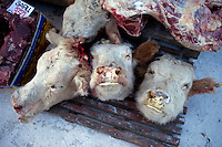 Cow heads for sale at the Yakutsk outdoor meat market. Yakutsk is one of the coldest cities on earth, with winter temperatures averaging -40.9 degrees Celsius.