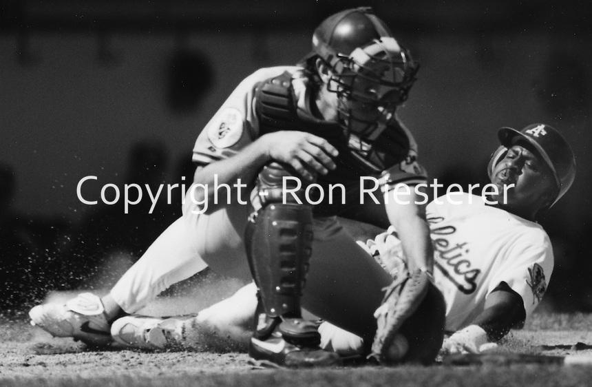 Oakland Athletics Jerry Brown slides safe, Kansas City catcher Brent Mayne tags.(1993 photo by Ron Riesterer)