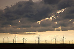 Wind driven turbine farm in Colorado, USA