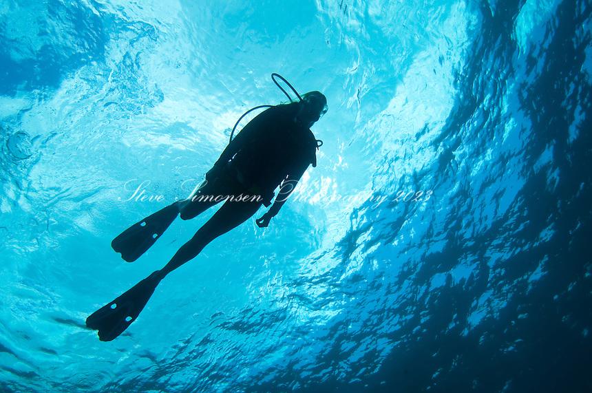 Scuba Diver Silhouette <br /> US Virgin Islands