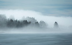 Idaho, West Central, Cascade. Morning fog and thin ice at the Crown Point Unit of Lake Cascade State Park in February.