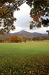 TN: Tennessee Great Smoky Mountains National Park, Mtns, Cades Cove, Fall color          .Photo Copyright: Lee Foster, lee@fostertravel.com, www.fostertravel.com, (510) 549-2202.Image: tnsmok217