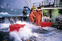 """Waves crash over the sides of the fishing vessel """"Aleutian Rover"""" as it fishes for bairdi crab in the Bering Sea in November 1993.  Red totes were used for sorting out the females and juveniles which were thrown back in the sea as a way of preserving future stocks. The Bering Sea is known for having the worst storms in the world.  Crab fishing in the Bering Sea is considered to be one of the most dangerous jobs in the world.  This fishery is managed by the Alaska Department of Fish and Game and is a sustainable fishery.  The Discovery Channel produced a TV series called """"The Deadliest Catch"""" which popularized this fishery."""