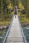 Hiker on swinging bridge over Riley Creek, Triple Lakes Trail, Denali National Park, Alaska
