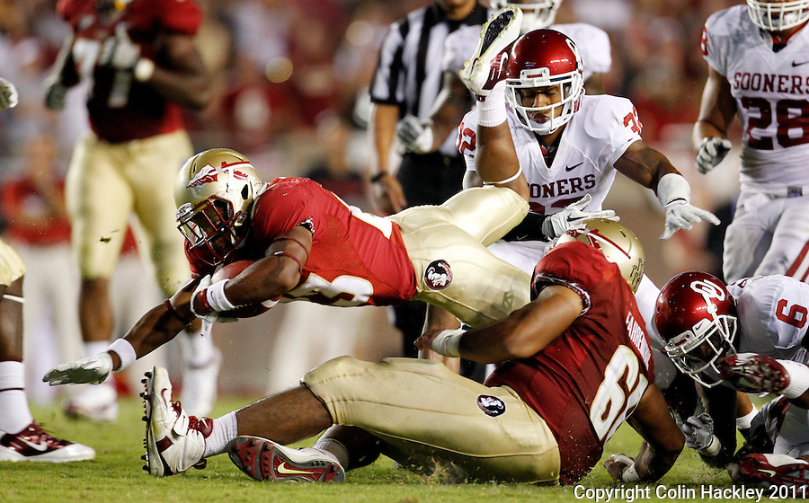 TALLAHASSEE, FL 9/17/11-FSU-OU091711 CH-Florida State's Chris Thompson dives after Oklahoma's Demontre Hurst, right and Jamell Fleming defend during second half action Saturday at Doak Campbell Stadium in Tallahassee. The Seminoles lost to the Sooners 23-13..COLIN HACKLEY PHOTO
