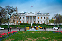 The White House in Washington DC in spring time