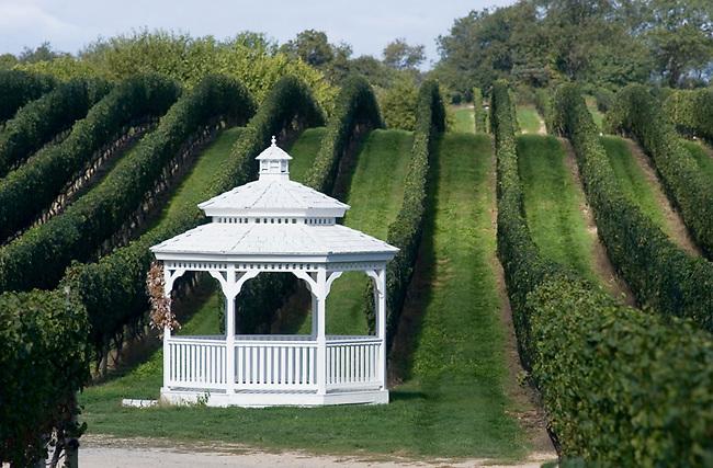 Pellegrini Winery on Long Island's North Fork.