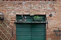 Bricco Marmorito a Portacomaro Stazione , un tempo l'abitazione degli avi di papa Bergoglio la maison ancestrale du pape Bergoglio,the ancestral home of Pope Bergoglio particolare porta