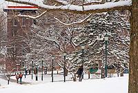 Students walk across the UVM Green. UVM Winter Campus