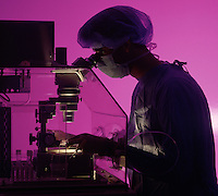 Doctor uses high-powered microscope in research and teaching hospital. In-vitro fertilization.