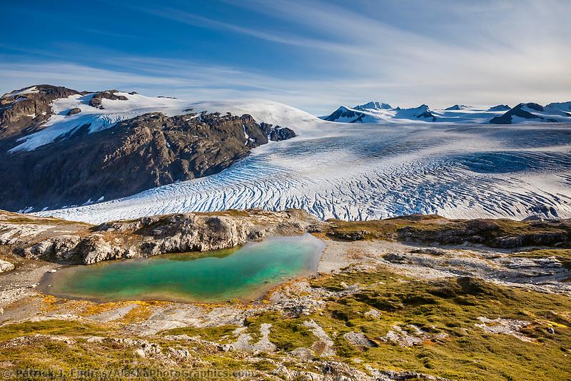 Mountain pond and the Exit glacier and Harding Ice Field, Kenai Fjords National Park,  Kenai Peninsula, southcentral, Alaska.