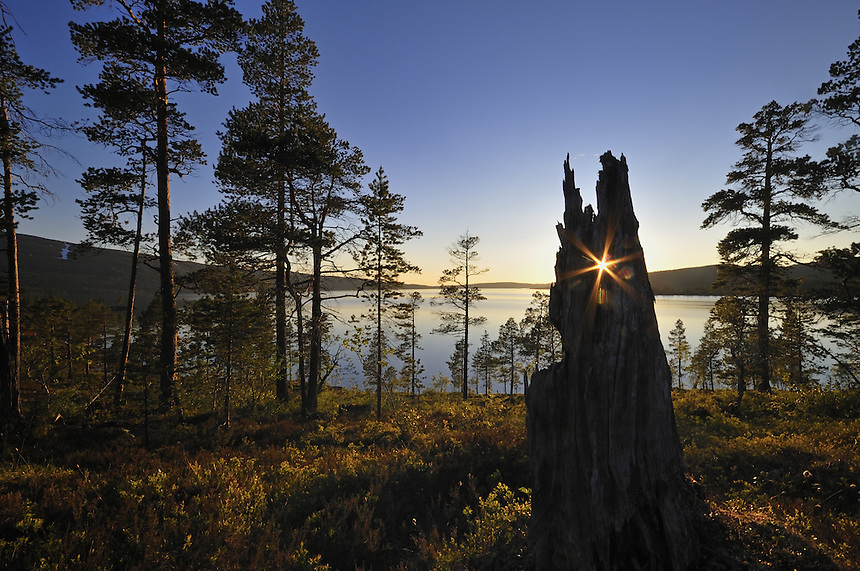 Landscape,Landskap,Norway Home decor, Trond Are Berge Landscape, landskap,