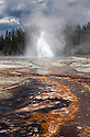 WY00583-00...WYOMING - Daisy Geyser in the Upper Geyser Basin of Yellowstone National Park.