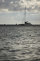 SEA_LOCATION_80130