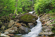Cascade along Cold Brook in Randolph, New Hampshire during the summer months. This is believed to be the forgotten Quarta Cascade.