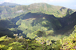 French Polynesia Tahiti Mahina forests landscapes