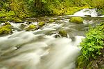 Above Mccord Falls, Oregon.